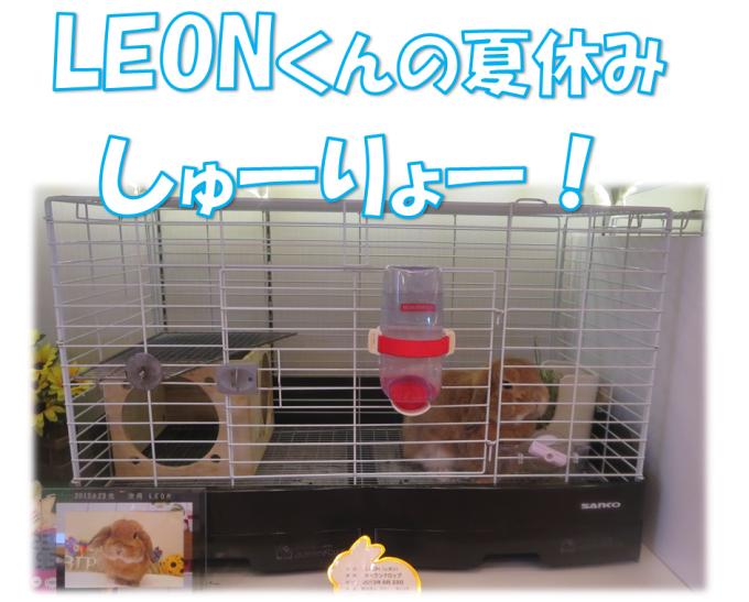 LEON夏休み終了