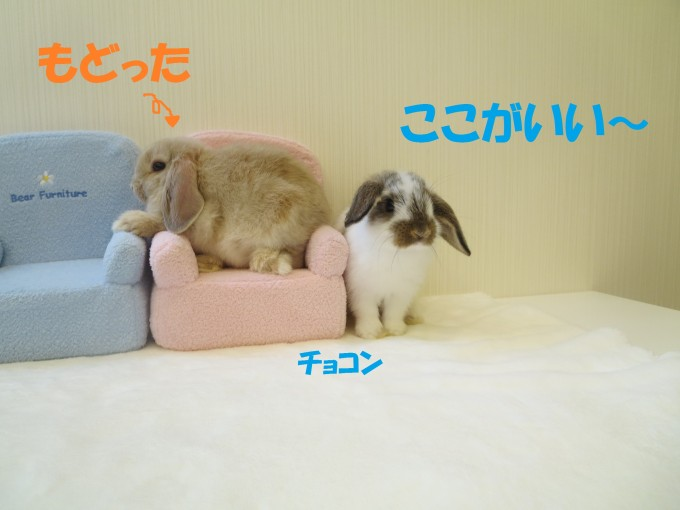 IMG_7201