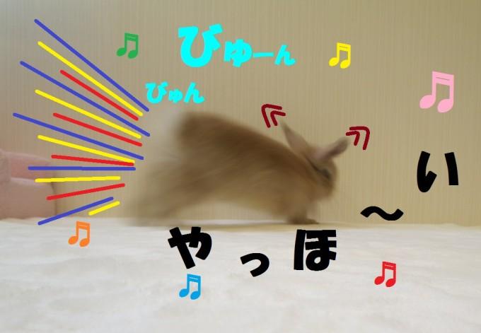 IMG_7465