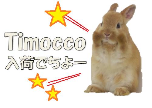 timocco1