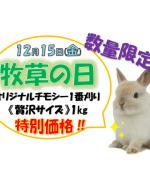 bokusounohi