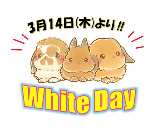 ホワイトデー2