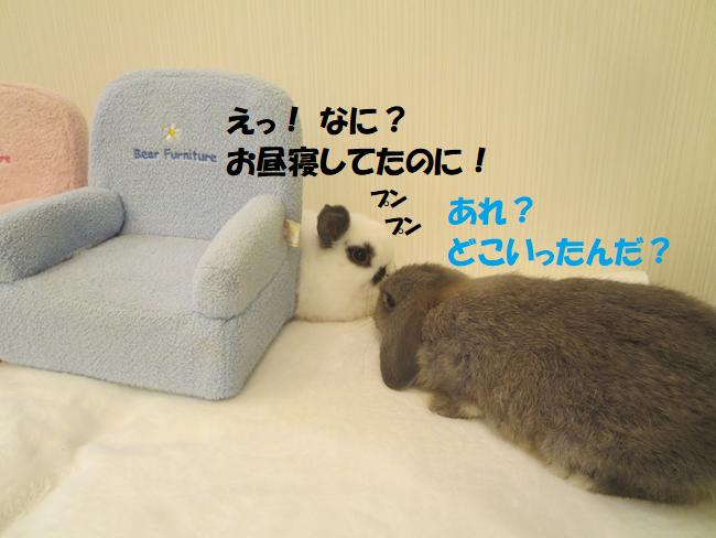 ブログ5 違う