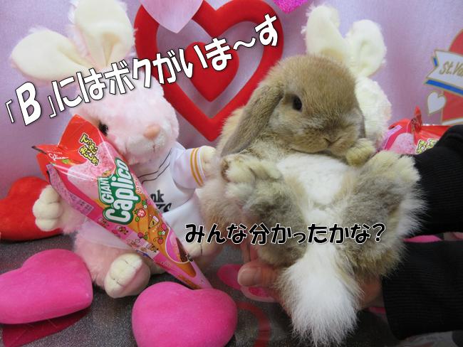 バレンタイン9